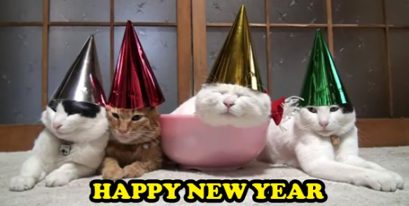 HAPPY-NEW-YEAR-CATS-in-cute-kitty-hats